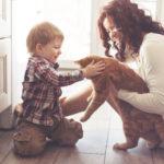 Quarentena: animais curam e são grandes companhias!